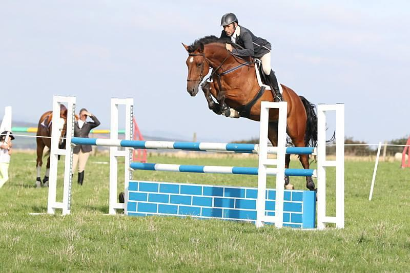 Super jumper by Calvaro Z, out of the international mare Marleen ridden by Geoff Luckett