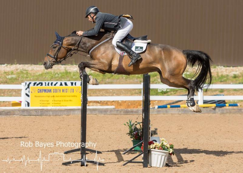 Competitive and consistent showjumper 8yo with many wins at 120 and 130.